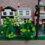avenue houses