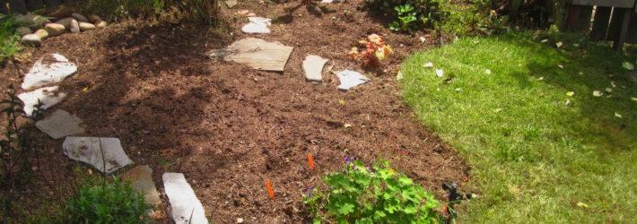 Ein Beet wird erneuert. Es liegen Steinplatten auf der braunen Erde, um einen kleinen Weg zu formen, dazwischen wachsen verschiedene grüne Pflanzen.