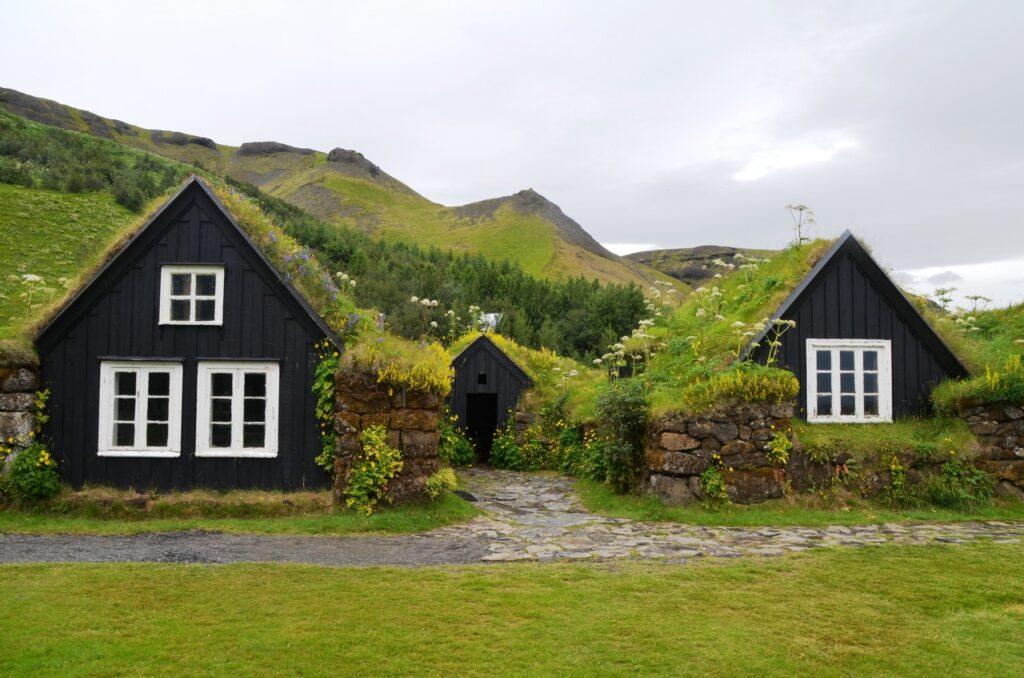 Zwei Häuser stehen in einer grünen Landschaft nebeneinander, beide mit Dachbegrünung.
