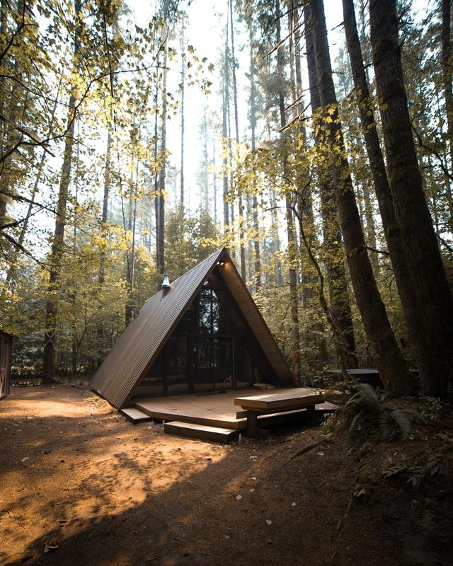 Im Wald steht ein Tiny House, welches eine dreieckige Form hat.